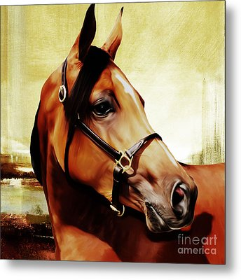 Horse # 341 Metal Print by Gull G