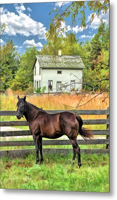 Horse And Barn At Old World Wisconsin Metal Print by Christopher Arndt