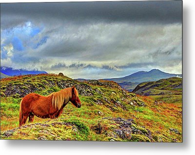Metal Print featuring the photograph Horse And Mountains by Scott Mahon