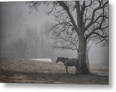 Horse And Tree Metal Print