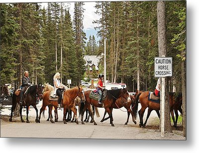 Metal Print featuring the photograph Horse Crossing by Al Fritz