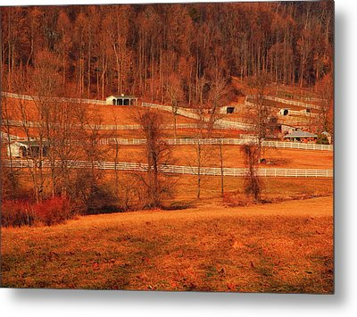 Horse Farm Along The Ny At Metal Print by Raymond Salani III