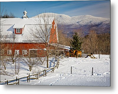 Horse Farm And Mount Mansfield Metal Print by Susan Cole Kelly