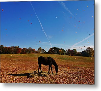 Horse Farm In The Fall Metal Print by Ed Sweeney