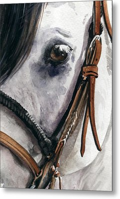 Horse Head Metal Print by Nadi Spencer