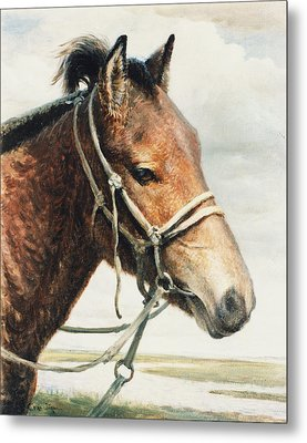 Metal Print featuring the painting Horse by Ji-qun Chen