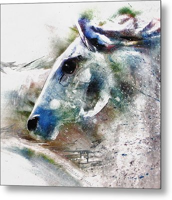 Horse Of Color Metal Print by Jackie Flaten