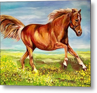 Horse On A Field  Metal Print by Olga Koval