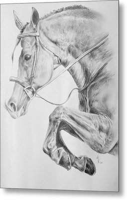 Horse Pencil Drawing Metal Print by Arion Khedhiry