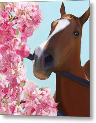 Horse Pink Blossoms Metal Print