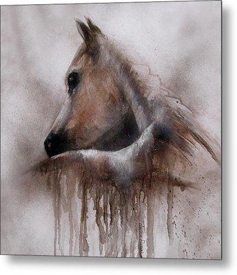 Horse Shy Metal Print by Jackie Flaten