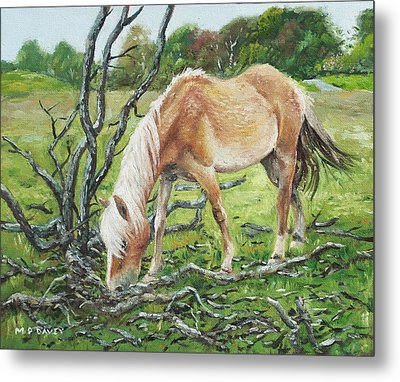 Horse With Burnt Tree Metal Print by Martin Davey