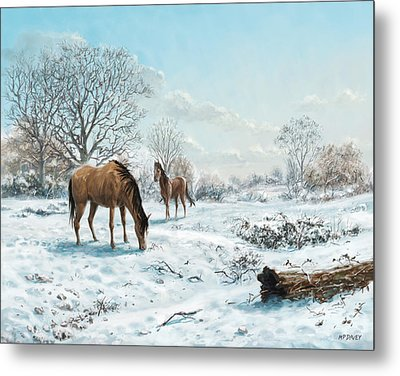 Horses In Countryside Snow Metal Print by Martin Davey