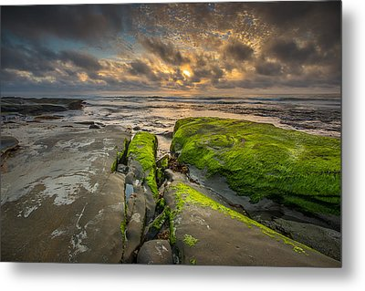 Hospitals Reef Metal Print by Peter Tellone
