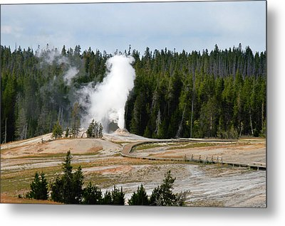 Hot Steam Dog Yellowstone National Park Wy Metal Print by Christine Till