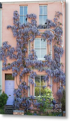 House Of Wisteria Metal Print by Tim Gainey