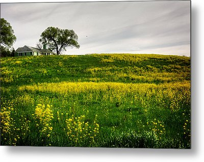 House On The Hill Metal Print by Greg Mimbs