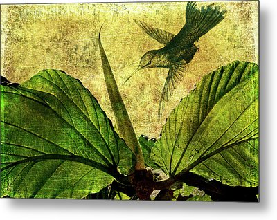 Metal Print featuring the digital art Hover by Margaret Hormann Bfa