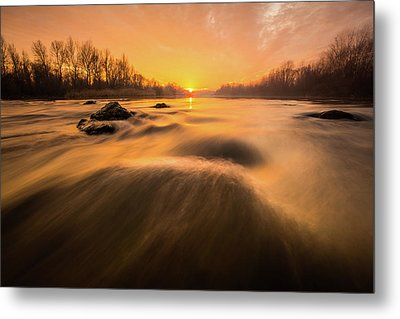 Metal Print featuring the photograph Hovering Over The River by Davorin Mance