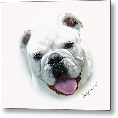 How Much Is That.... Metal Print by Cecil Fuselier