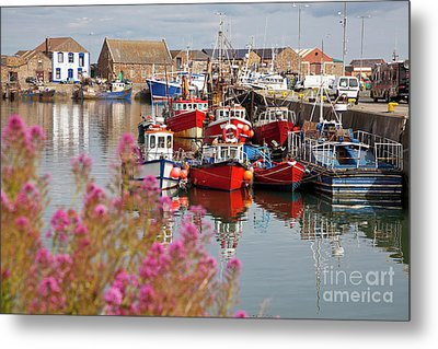 Howth Harbour Metal Print by Gabriela Insuratelu