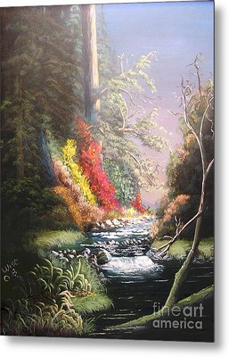 Huckleberry Creek Metal Print by John Wise