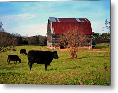 Huffacker Farm Metal Print
