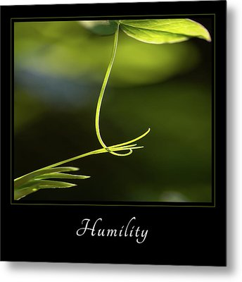 Metal Print featuring the photograph Humility 2 by Mary Jo Allen