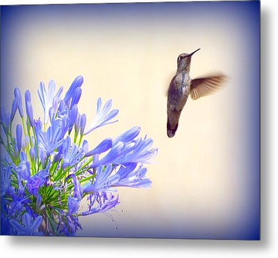 Hummer In Blue Metal Print