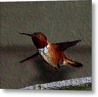 Metal Print featuring the photograph Hummingbird 2 - Embossed by Erica Hanel