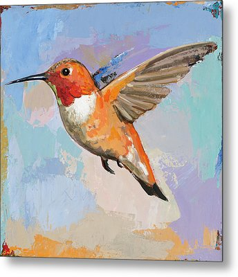 Hummingbird #7 Metal Print by David Palmer