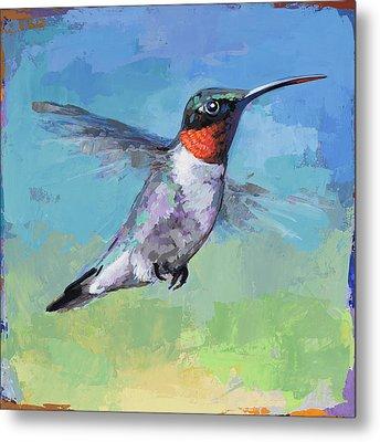 Hummingbird #8 Metal Print by David Palmer