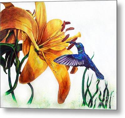 Hummingbird And Yellow Flower Metal Print
