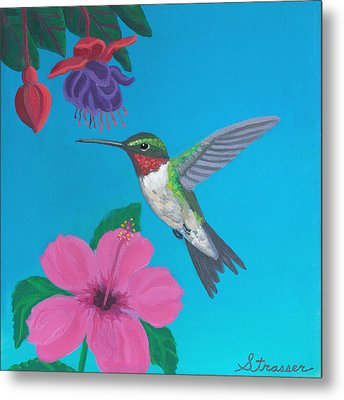 Hummingbird Heaven Metal Print by Frank Strasser