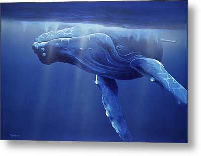 Humpback Portrait Metal Print