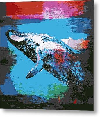 Humpback Wale V1 Metal Print by Brandi Fitzgerald