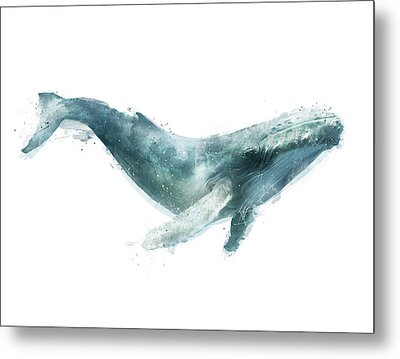 Humpback Whale From Whales Chart Metal Print by Amy Hamilton