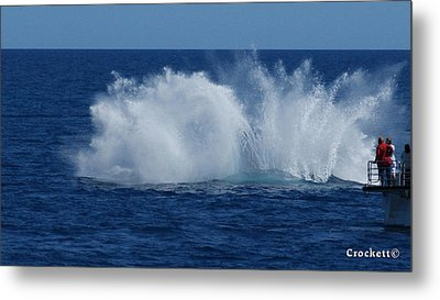 Humpback Whale Breaching Close To Boat 23 Image 3 Of 4 Metal Print