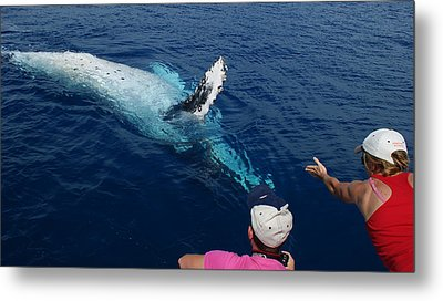 Humpback Whale Reaching Out Metal Print