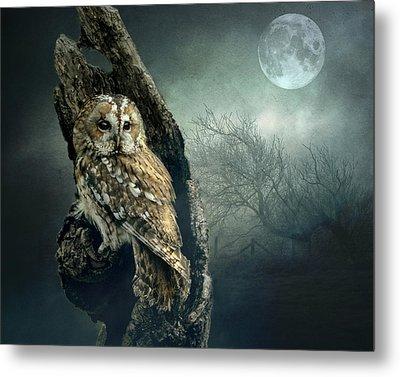 Hunter's Moon Metal Print by Brian Tarr
