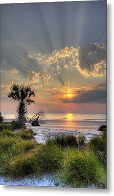 Hunting Island Sc Sunrise Palm Metal Print by Dustin K Ryan