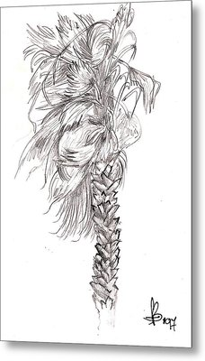 Metal Print featuring the drawing Hurrracane Winds by Fanny Diaz