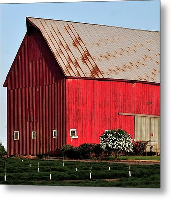 Hwy 47 Red Barn 21x21 Metal Print by Jerry Sodorff