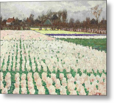 Hyacinth Fields Metal Print by George Hitchcock