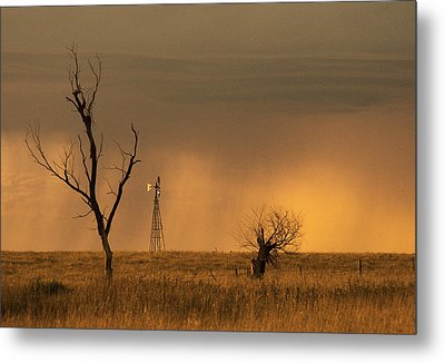 Metal Print featuring the photograph Hyde County by Don Durfee
