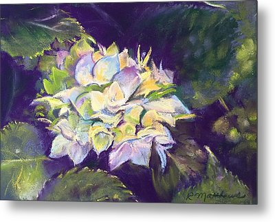 Metal Print featuring the pastel Hydrangea by Rebecca Matthews
