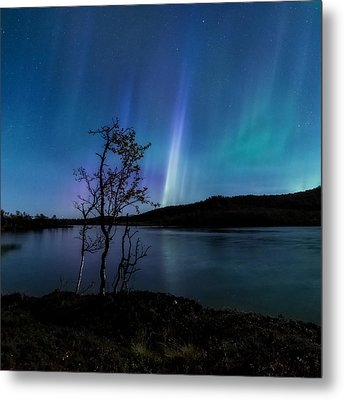 Hymn Of The Night Metal Print by Tor-Ivar Naess