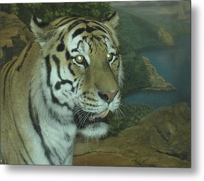 Metal Print featuring the photograph I Am Beautiful by Tammy Sutherland