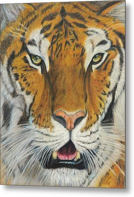 I Am Looking At You Metal Print by Angela Finney