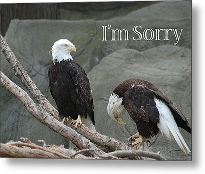 I Am Sorry Metal Print